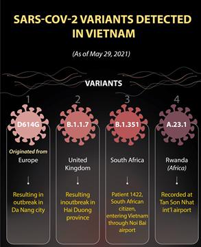 SARS-COV-2 variants detected in Vietnam