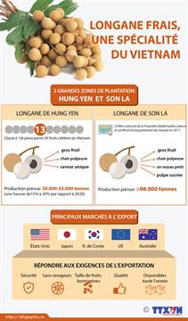 Longane frais, une spécialité du Vietnam