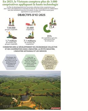 En 2025, le Vietnam comptera plus de 3.000  coopératives appliquant la haute technologie