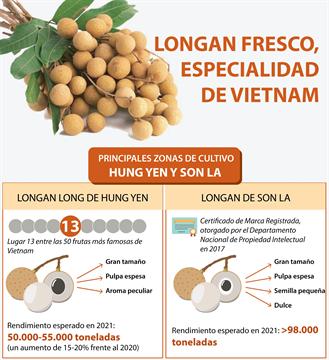 Longan fresco, especialidad de Vietnam