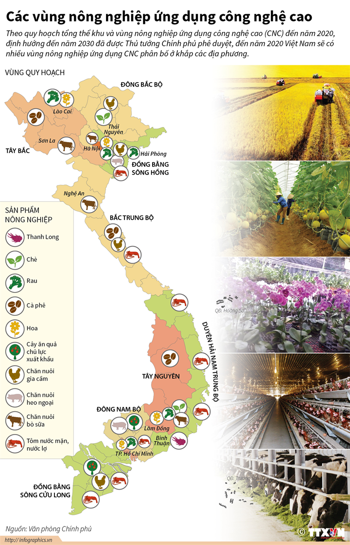 Các vùng nông nghiệp ứng dụng công nghệ cao