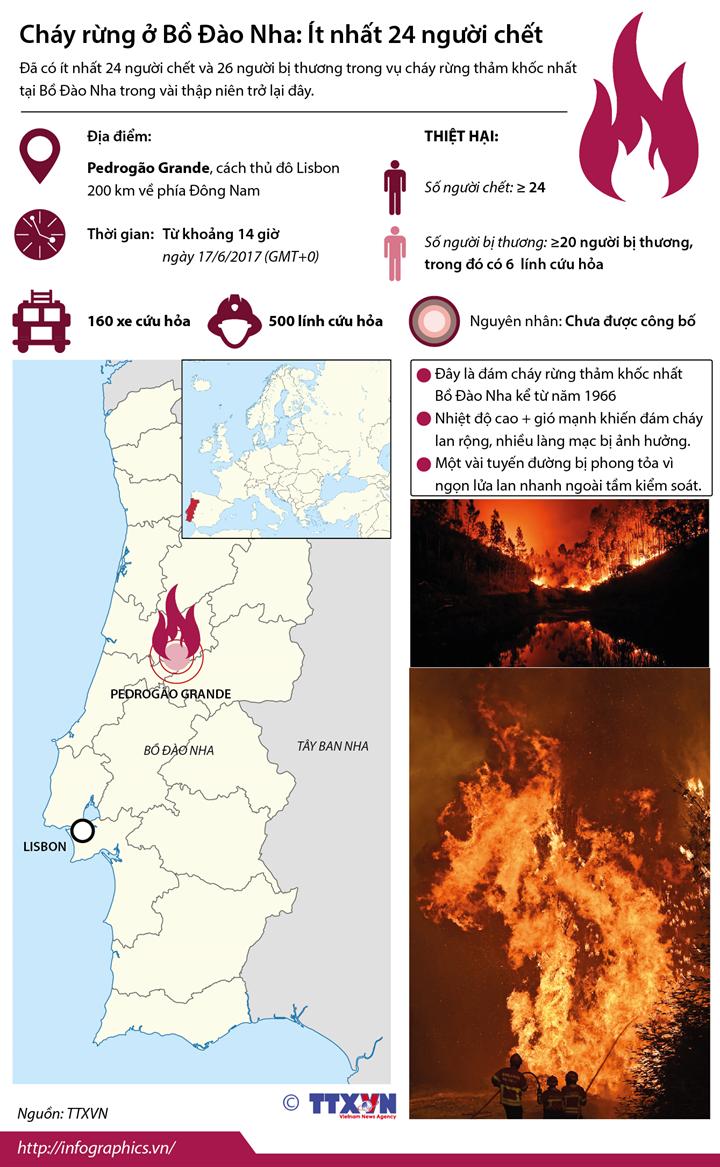 Cháy rừng ở Bồ Đào Nha: Ít nhất 24 người chết