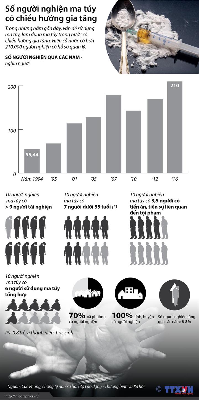 Số người nghiện ma túy có chiều hướng gia tăng