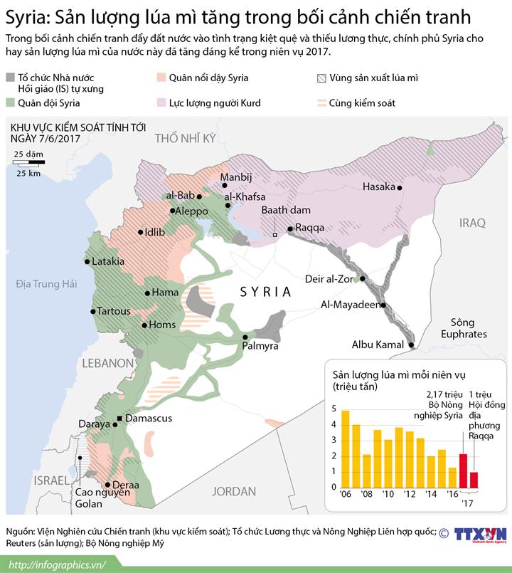 Syria: Sản lượng lúa mì tăng trong bối cảnh chiến tranh