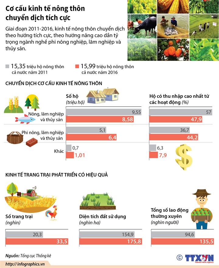 Cơ cấu kinh tế nông thôn chuyển dịch tích cực