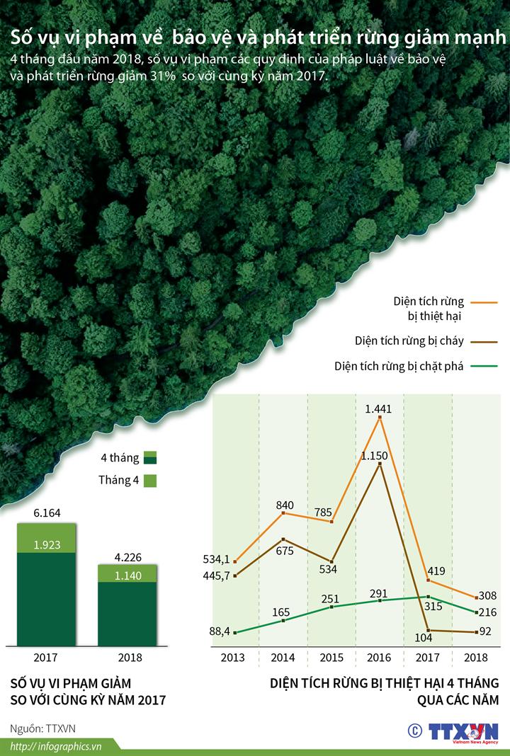 Số vụ vi phạm về bảo vệ và phát triển rừng giảm mạnh