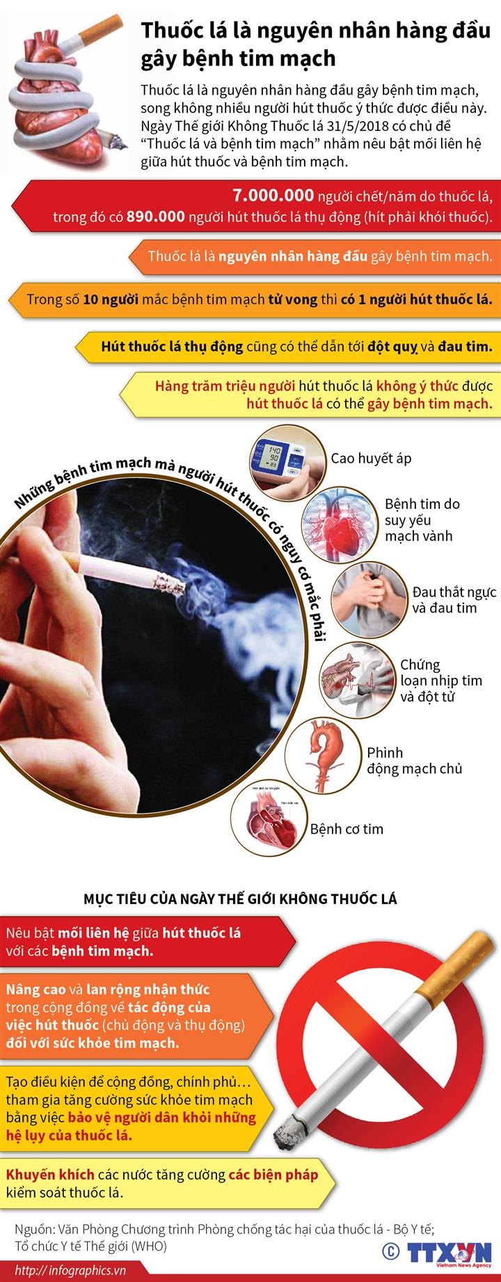Thuốc lá là nguyên nhân hàng đầu gây bệnh tim mạch