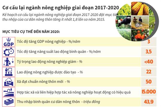 Cơ cấu lại ngành nông nghiệp giai đoạn 2017-2020