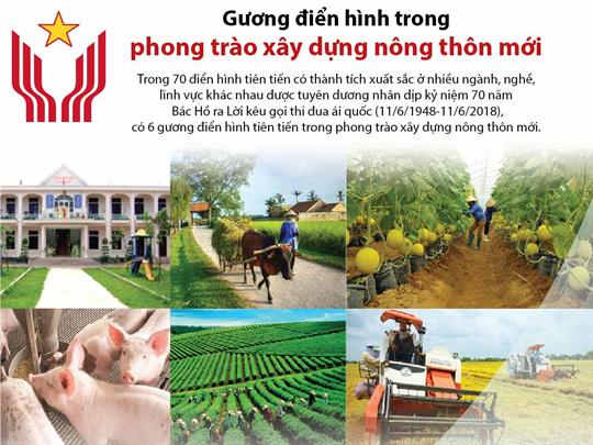 Gương điển hình trong phong trào xây dựng nông thôn mới