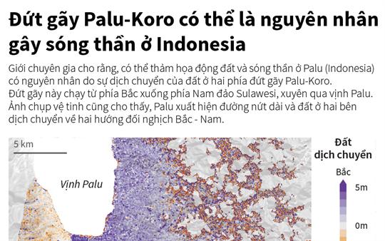 Đứt gãy Palu-Koro có thể là nguyên nhân gây sóng thần ở Indonesia