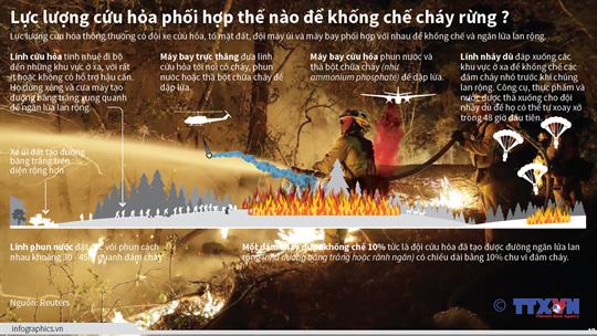 Lực lượng cứu hỏa phối hợp thế nào để khống chế cháy rừng?