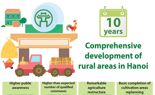 Comprehensive development of rural areas in Hanoi