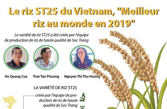 Le riz ST25 du Vietnam,