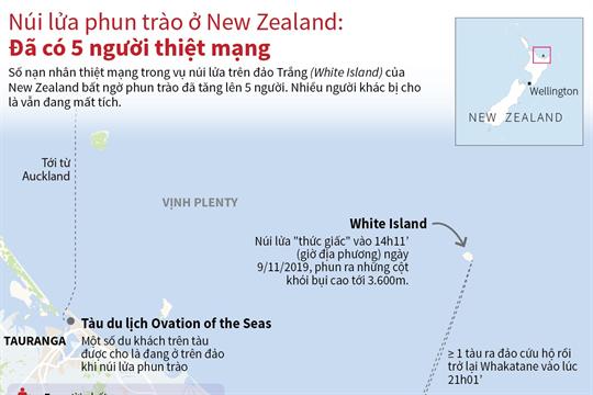 Núi lửa phun trào ở New Zealand: Đã có 5 người thiệt mạng