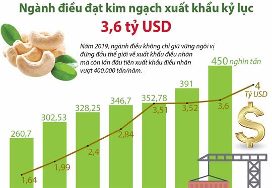 Ngành điều đạt kim ngạch xuất khẩu kỷ lục 3,6 tỷ USD