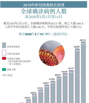 2019年新冠病毒肺炎疫情:中国大陆境外死亡人数3人