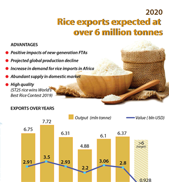Rice exports expected at over 6 million tonnes