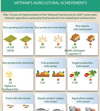 Vietnam's agricultural achievements