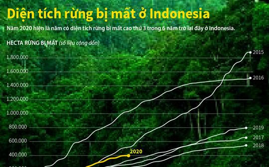 Diện tích rừng bị mất ở Indonesia
