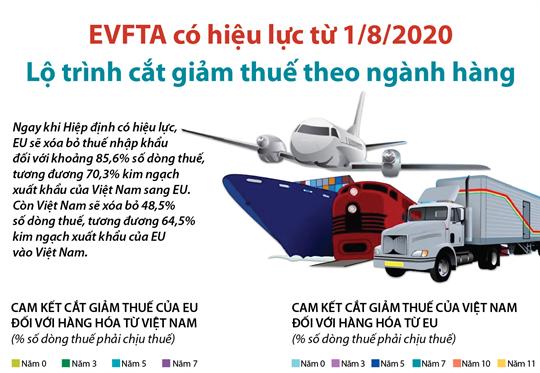 EVFTA có hiệu lực từ 1/8/2020. Lộ trình cắt giảm thuế theo ngành hàng