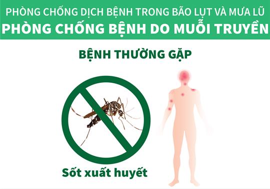 Phòng chống bệnh do muỗi truyền