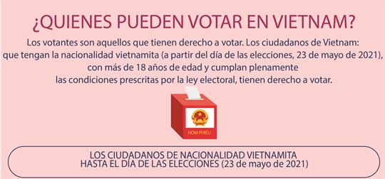 ¿Quienes pueden votar en Vietnam?