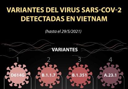 Las variantes del virus SARS-CoV-2 detectadas en Vietnam