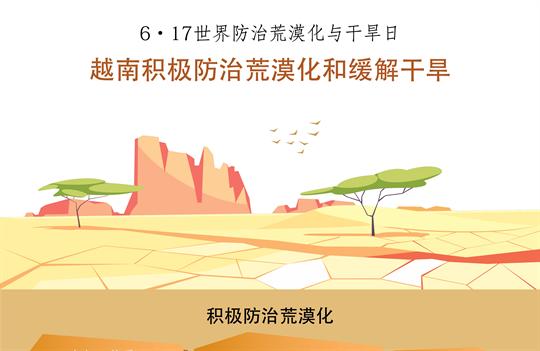 越南积极防治荒漠化和缓解干旱