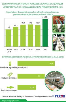 Les exportations de produits agricoles, sylvicoles et aquatiques atteignent plus de 24 milliards d'USD au 1er semestre