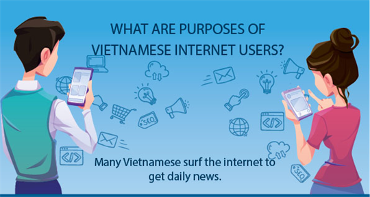 What are purposes of Vietnamese internet users?