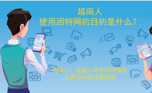 越南人使用因特网的目的是什么?