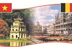 越南-比利时在各领域上的合作关系不断蓬勃发展